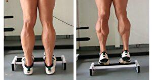 esercizi a corpo libero calf
